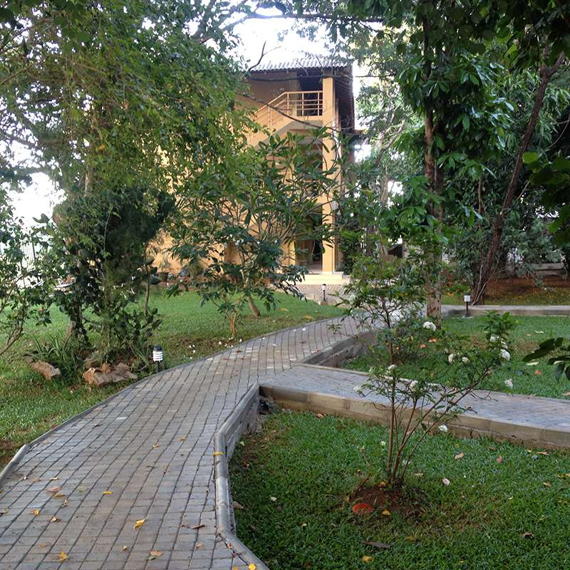 Walking Path at Pelwehera Village Resort