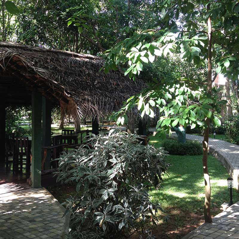 View of the Garden at Pelwehera Village Resort