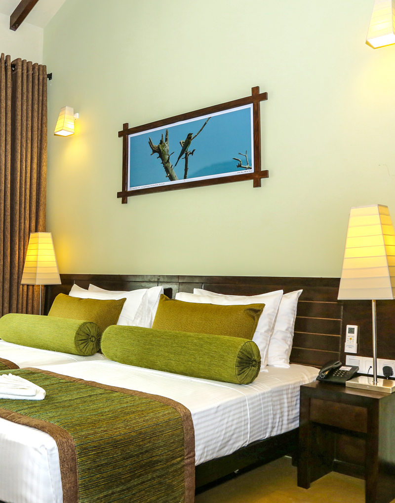 Comfortable Deluxe Double Rooms